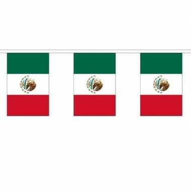 Mexicaanse 2x polyester vlaggenlijn van mexico 3 meter