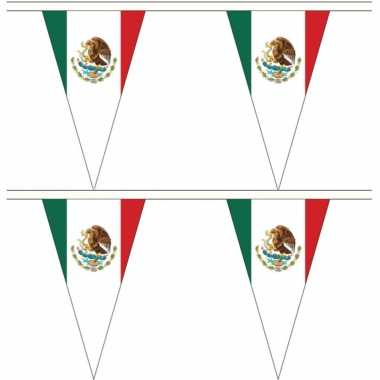 Mexicaanse 2x stuks mexico landen punt vlaggetjes 5 meter