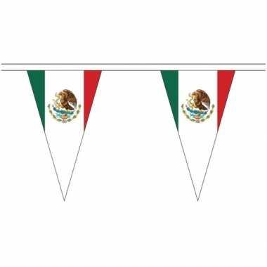 Mexicaanse extra lange mexico vlaggenlijnen van 5 meter